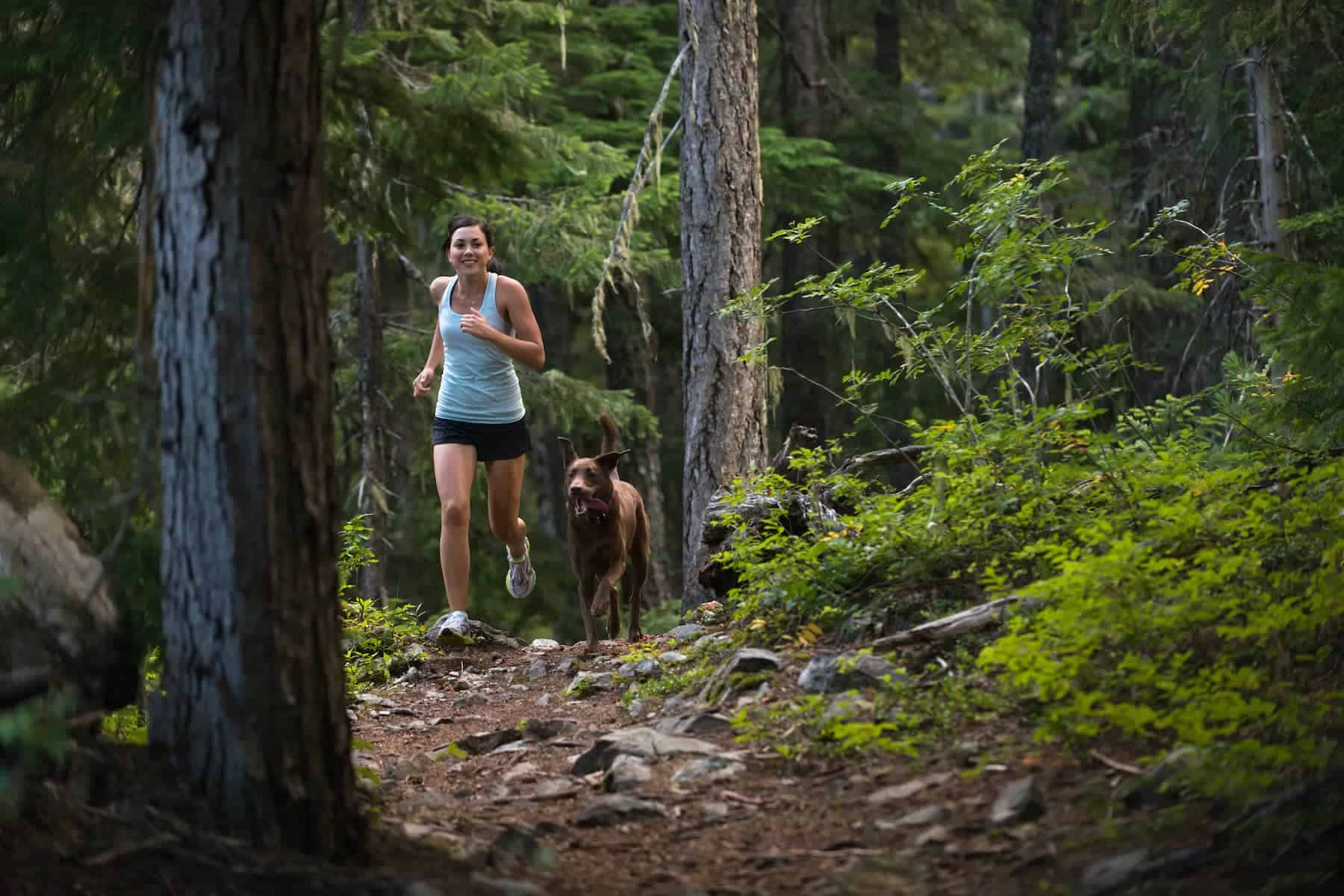 Slider_Woman jogging with dog in forest_1800x1200C